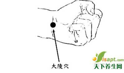 不可不知:手上的急救与养老的大穴位