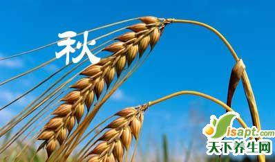 天干物燥初秋时,养生保健需防燥