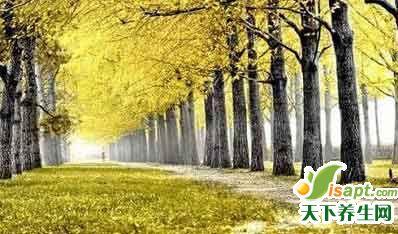 中医八纲辩证与心理健康