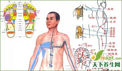 中医12经络养生法