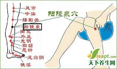 春季常按7个穴位养肝健脾