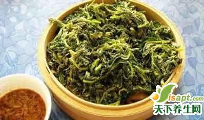养生厨房:19种常见野菜养生吃法