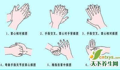 幼儿园正确洗手步骤图 分解
